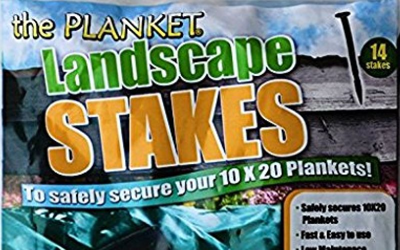 The Planket Landscape Stakes