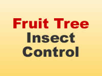 Insect Control - Fruits & Vegetables