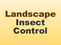 Insect Control - Landscape