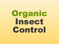 Insect Control - Organic
