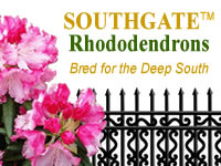 Southgate Rhododendron Series