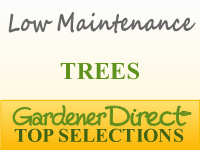 Trees - Low Maintenance