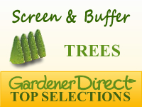 Trees for Screens & Buffers